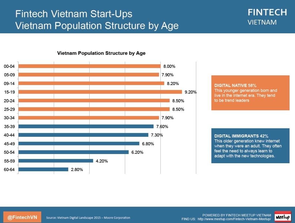 vietnam population structure