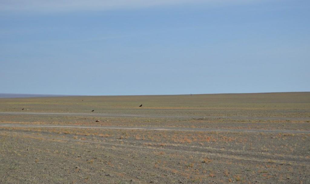 El desierto de Gobi