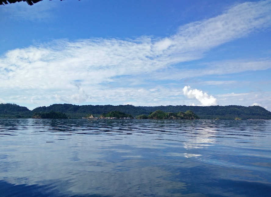 Buceando en las Togian y jugando con tiburones en Gorontalo
